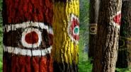 PINTURAS de IBARROLA en el Bosque Animado. Kortezubi, Bizkaia